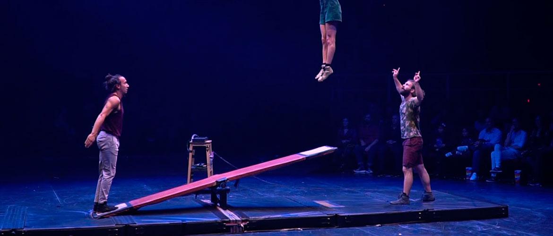 Tripotes la Compagnie Cirque